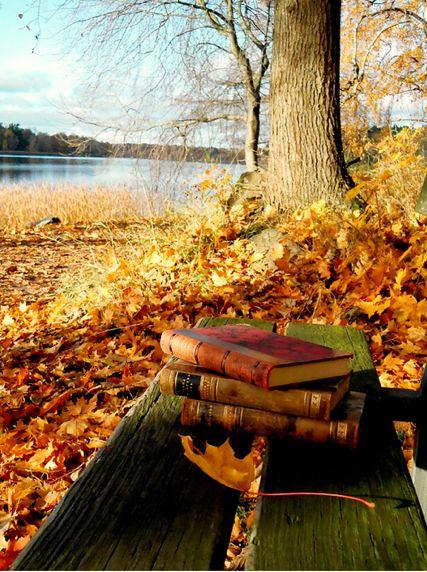 fallday