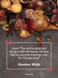 HumbertWolfe