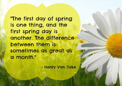 Springquote2