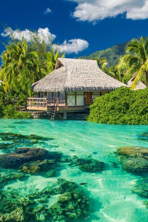 Maldives.jpg